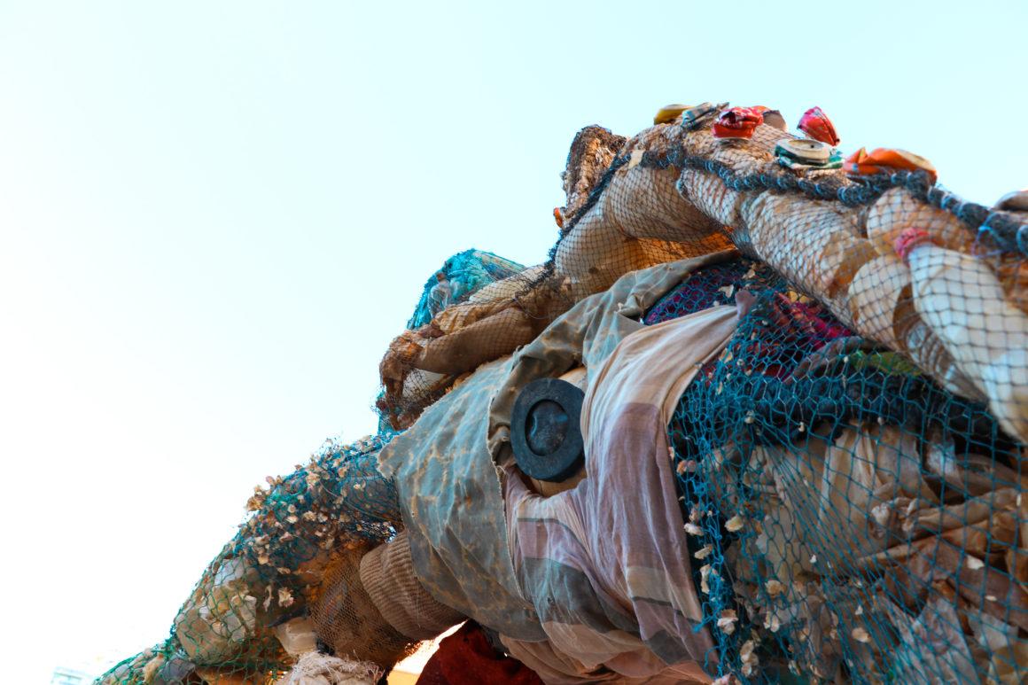 El monstruo marino o… La pesadilla de nuestra basura